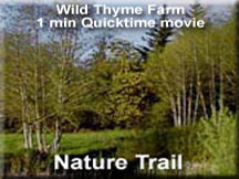Wild Thyme Nature Trail